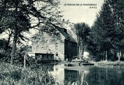 La wantzenau herbier universit de strasbourg for Le moulin wantzenau